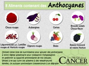 Food-source-Anthocyanins